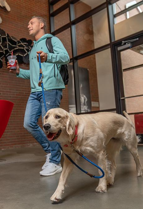 Stanhope Apartments walking dog